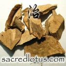 Chang Shan (Dichroa Root)